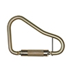 Fall Protection Carabiners