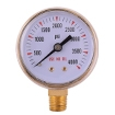 Gas Pressure Gauges